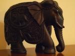 Elefante – Agra,India